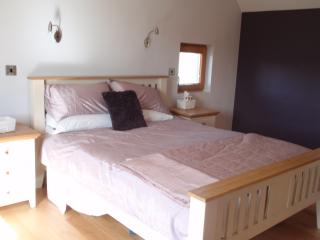 Beautiful, light filled modern house - Gorey vacation rentals