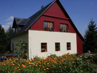 Apartment Cottage - Bohemian Switzerland - Krasna Lipa vacation rentals