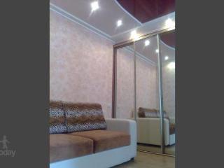 Apartment in Nizhnij Novgorod #245 - Bolshoye Kozino vacation rentals