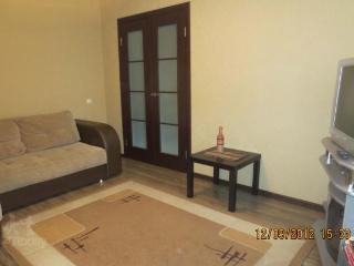 Convenient 2 bedroom Apartment in Minsk - Minsk vacation rentals