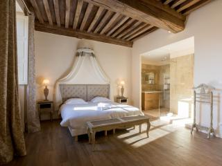 Belin 1G - Beaune vacation rentals