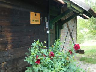 2 bedroom Chalet with Internet Access in Uzice - Uzice vacation rentals