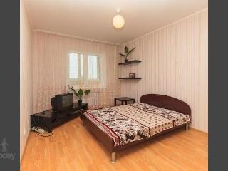 Apartment in Ekaterinburg #514 - Yekaterinburg vacation rentals