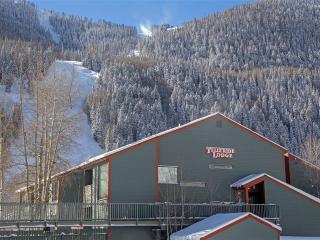 TELLURIDE LODGE 407 - Telluride vacation rentals