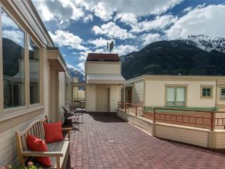 Bright House with Television and Grill - Telluride vacation rentals