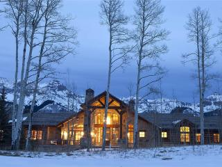Nice House with Hot Tub and Grill - Telluride vacation rentals