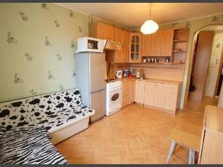 Romantic 1 bedroom Condo in Pushkin - Pushkin vacation rentals