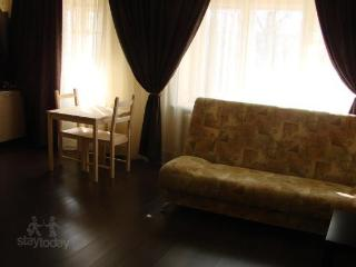 Apartment in Nizhnij Novgorod #1908 - Nizhny Novgorod Oblast vacation rentals