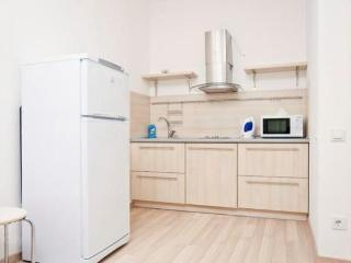 Cozy 2 bedroom Apartment in Kiev - Kiev vacation rentals