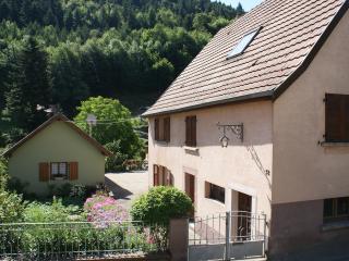 Maison individuelle située au pied du Grand Ballon - Rimbach-pres-Guebwiller vacation rentals