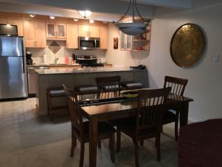 1 Bedroom condo in downtown Aspen- Unit 14 - Aspen vacation rentals