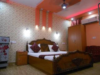 Luxury Double Room with Attached bath - New Delhi vacation rentals