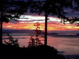 Secluded cedar two story with incredible oceanview - Orcas vacation rentals