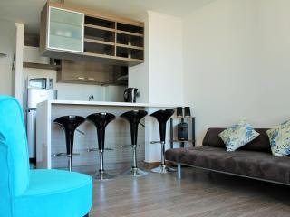 Arriendo depto nuevo en vigia Montemar Con Con - Concon vacation rentals