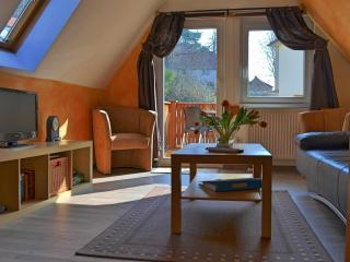 Ferienwohnung Dresden Pillnitz bis 4 Personen - Dresden vacation rentals