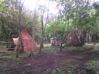 Romantic 1 bedroom Tipi/Teepee in La Fortuna de Bagaces - La Fortuna de Bagaces vacation rentals