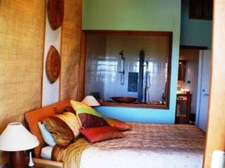 Dreamcacther Lodge B&B The Pacific Room - Picton vacation rentals