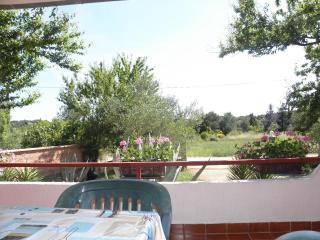 1 bedroom Apartment with Internet Access in Susica - Susica vacation rentals