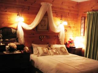 Dreamcatcher Lodge B&B The Homestead Room - Picton vacation rentals