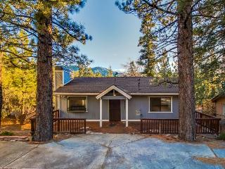 Relax in style at this cozy cabin for nine - Big Bear Lake vacation rentals