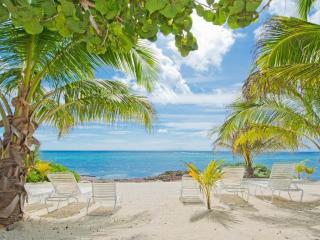 Bright 2 bedroom Condo in Grand Cayman - Grand Cayman vacation rentals