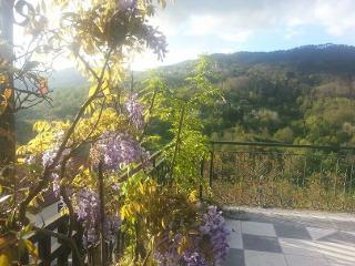 tra le colline delle Cinqueterre - Carro vacation rentals