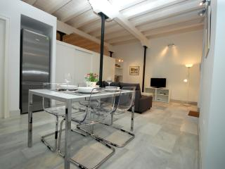 [731] Modern and beautiful loft in old Seville - Seville vacation rentals