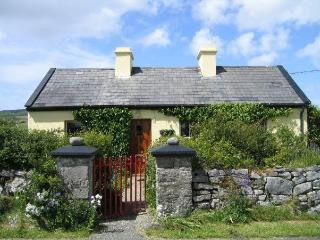 Quiet Old Fashioned Cottage on the Burren - Lisdoonvarna vacation rentals