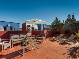 Salvador Terrace - Seville vacation rentals
