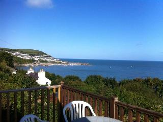 Havens Quay West Amazing Panoramic Views Brecon 15 - New Quay vacation rentals