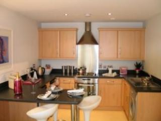 First Floor Flat in Cardiff bay 5 mins to town - Cardiff vacation rentals