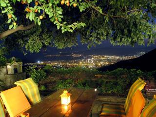 Residence Stafylopati - Studio - Makrinitsa vacation rentals
