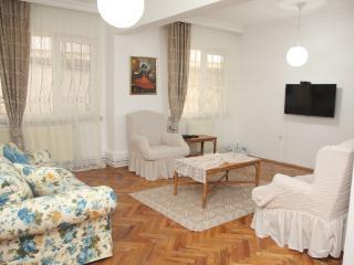 Vacation rentals in Ankara Province