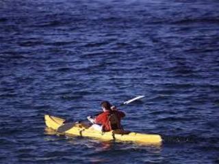 STUNNING 4-BDRM KAWARTHA WATERFRONT, BOBCAYGEON - Kawartha Lakes vacation rentals