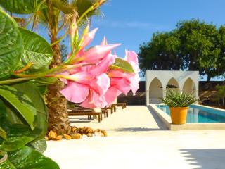 Casa 3 Leones - renoviertes Stadthaus Finca-Stil - Santanyi vacation rentals