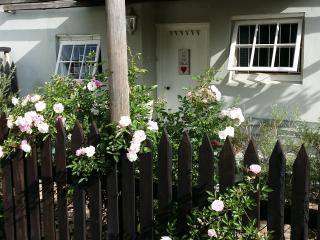Nostalgia Self Catering Garden Cottage - Riversdale vacation rentals
