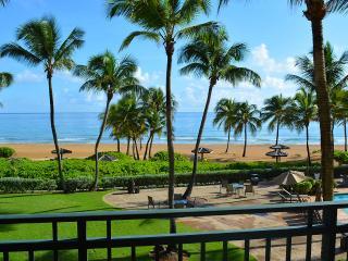 Luxury Ocean/beach front Villa at The Wyndham - Rio Grande vacation rentals