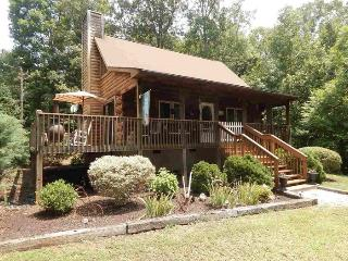 Well Appointed Cabin - 7 Mins from TIEC - Rutherfordton vacation rentals