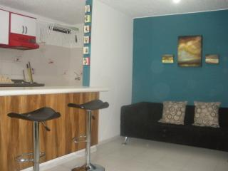 good price apartment chapinero - Bogota vacation rentals