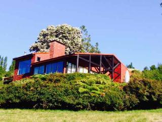 Beautiful Villa with Internet Access and Parking - Lago Ranco vacation rentals