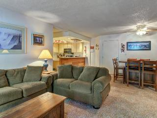 Ski-in/ski-out condo w/ shared hot tub & entertainment - dogs ok! - Brian Head vacation rentals