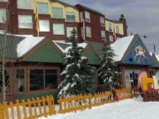 BIG WHITE STUDIO CONDO - Kelowna vacation rentals