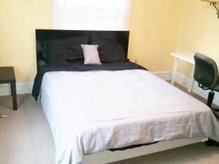 Baltimore Center.   Near Johns Hopkins University. - Baltimore vacation rentals
