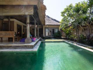 Dream Villa 2BR in Umalas, Daily / Monthly , Low Rates ! - Kuta vacation rentals