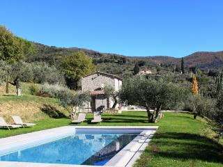 Bright 2 bedroom House in Cortona - Cortona vacation rentals