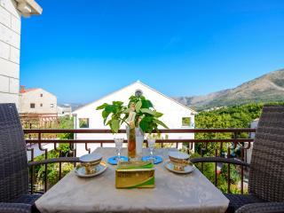 Nice Cavtat Studio rental with Internet Access - Cavtat vacation rentals