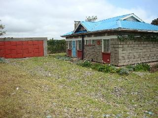 Nice House with A/C and Garage - Naro Moru vacation rentals