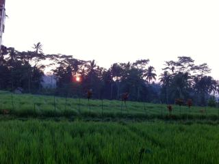 Villa Neyang invite you to stay with Peace of Mind - Kedewatan vacation rentals
