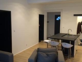 """L'appartement """"Le Bureau du Maire"""" T3 - Bourg-les-Valence vacation rentals"""