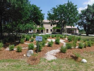 """Gîte """"le Kiwi"""" dans une ferme bio en Provence - Le Thor vacation rentals"""